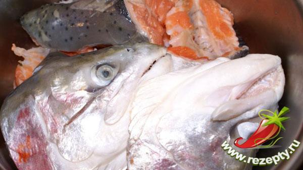 Подготовка рыбы для заливного