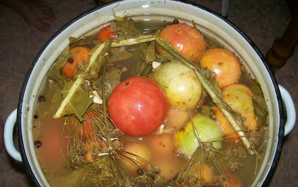 помидоры в рассоле