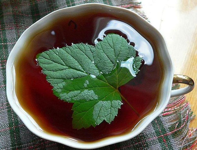 Цейлонский чай с чёрной смородиной